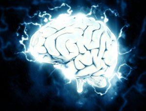 4 Best Foods to Boost Brain Health